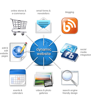 Dynamic Website Designing Company in Delhi
