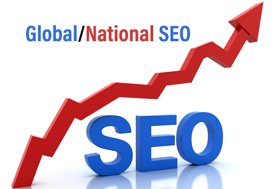 Global/National SEO Services