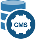 CMS WEBSITE DESIGNING